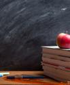 School Teacher Concept